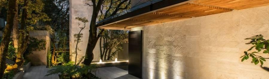Rhyzoma – Arquitectura y Diseño
