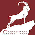 Caprico facilitis services pvt ltd