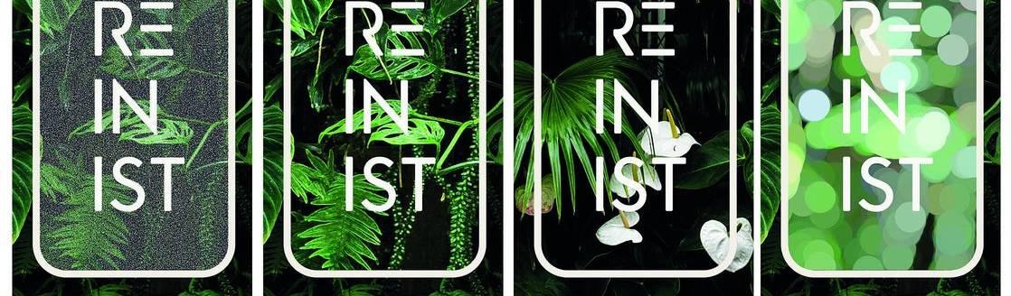 Reinist / Reinistanbul