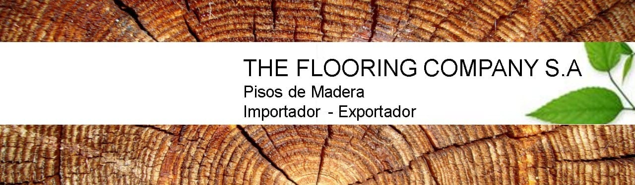 THE FLOORING COMPANY S.A
