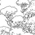 Strauchpoeten