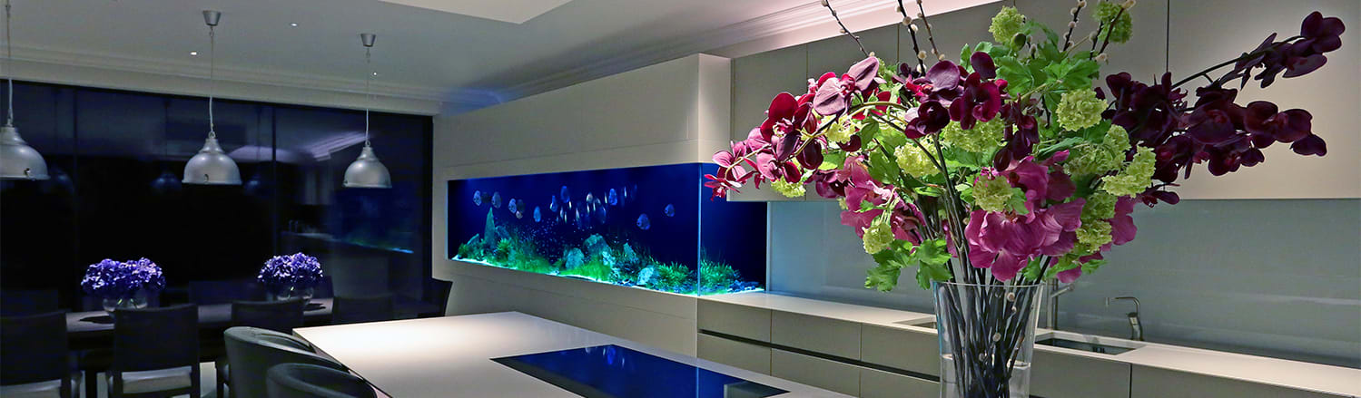 Aquarium Architecture