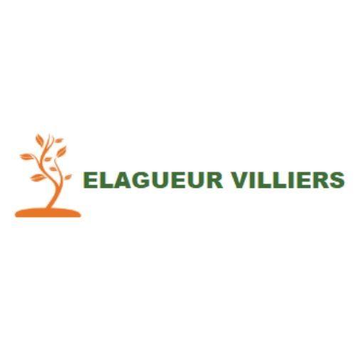 Elagage Villiers Elagueur Bois-le-Roi 77