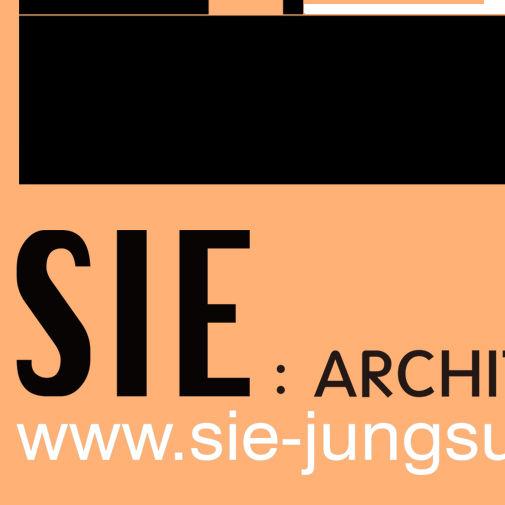 SIE ARCHITECTURE