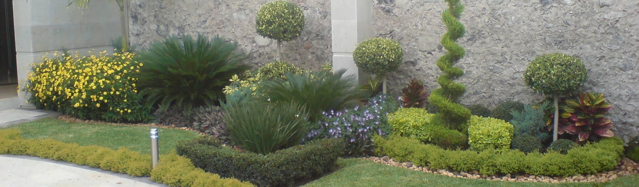 Jard n tropical de vivero sofia homify for Biombos para jardin