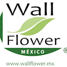 Wallflower Mexico SA de CV