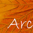 Arc Architects Ltd