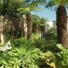 Christine Wilson Gardens