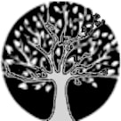 Lesomodul