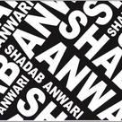 Shadab Anwari & Associates.