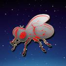 Red Fly Publicidad