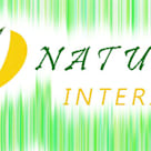 природный интерьер