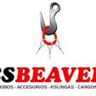 CS Beaver