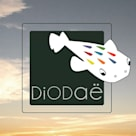 Studio Diodaë