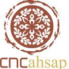 CNCAHSAP.NET