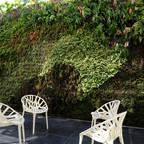 Vertical Garden – Jardim Vertical e Paisagismo Corporativo
