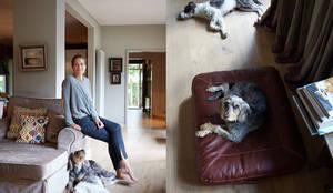 Гостиная в . Автор – Cloud 7 Finest Interiors for Dogs & Dog Lovers