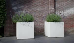 Moderne tuin Heemstede: modern Balkon, veranda & terras door Biesot