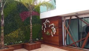 Patio Central: Balcones y terrazas de estilo moderno por Arquitectura Orgánica Viviana Font