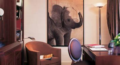 Thierry Bisch – Peintre animalier  – Animal Painter