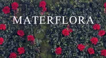 Materflora Lda.
