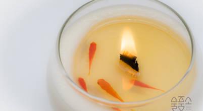 물고기를 품은 소이캔들