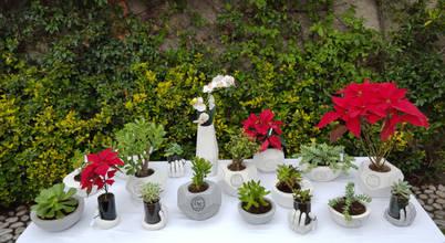 Articulos de jardineria en ciudad nezahualcoyotl for Articulos para jardineria