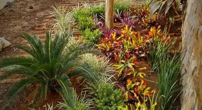 10 meilleures inspirations pour petits jardins