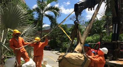 Monteverde Ltda