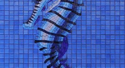 Aquacolors / Moretti A&D
