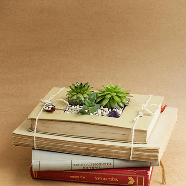 cổ điển  theo Terraqua Design, Kinh điển