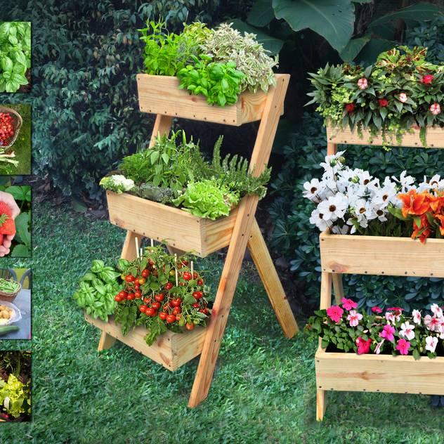 for Plantas beneficiosas para el huerto