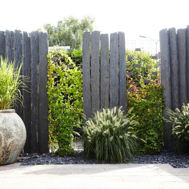 La clôture de jardin : des idées pour sublimer votre extérieur ...