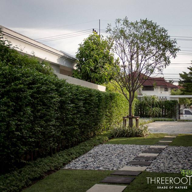 สวนคุณพาฝัน:   by Threeroots Group Co.,Ltd.