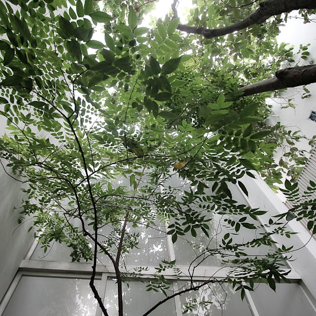 PATIO WITH TREES bởi NBD ARCHITECTS