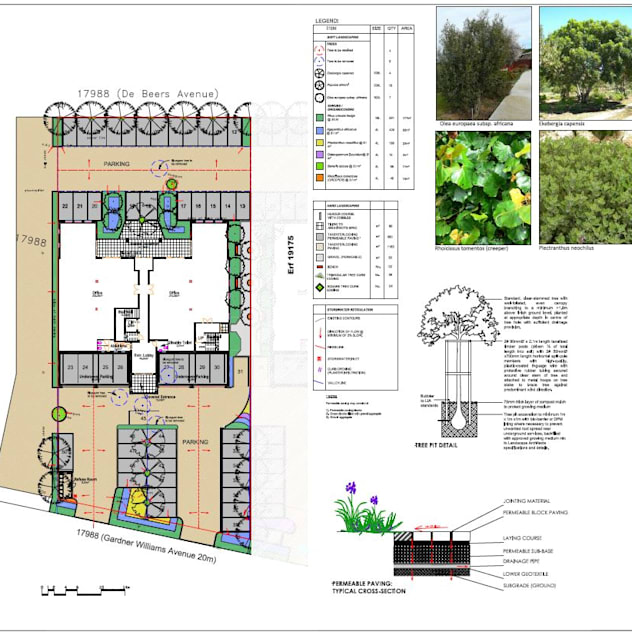 office landscaping plan for council approval Lemontree Landscape architecture and Design