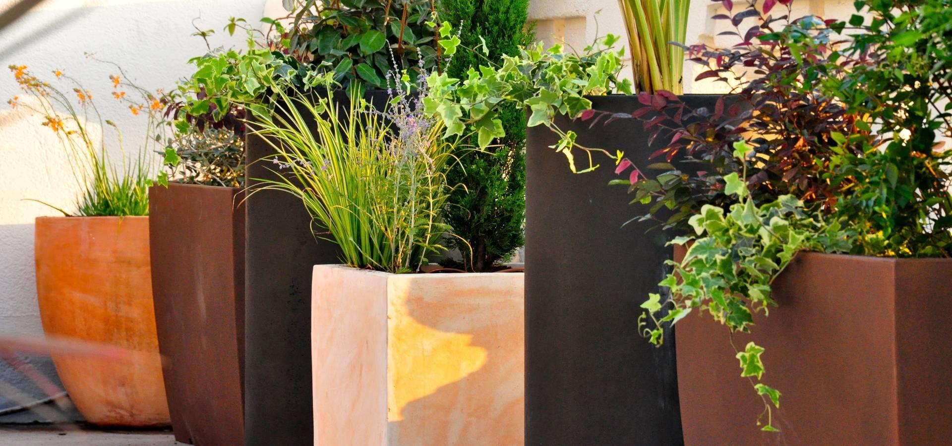 ésverd – jardineria & paisatgisme