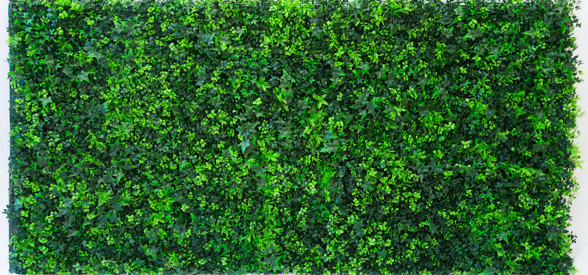 Artificial Vertical Garden Green Wall By Evergreen Trees