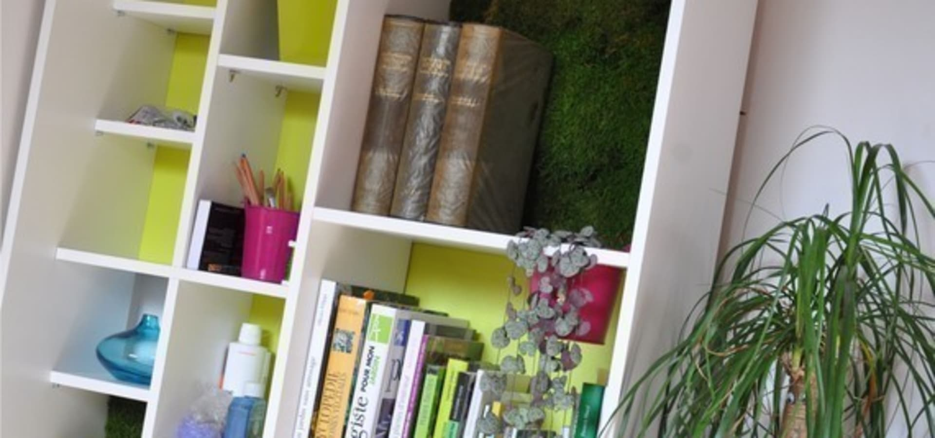 Evo green design