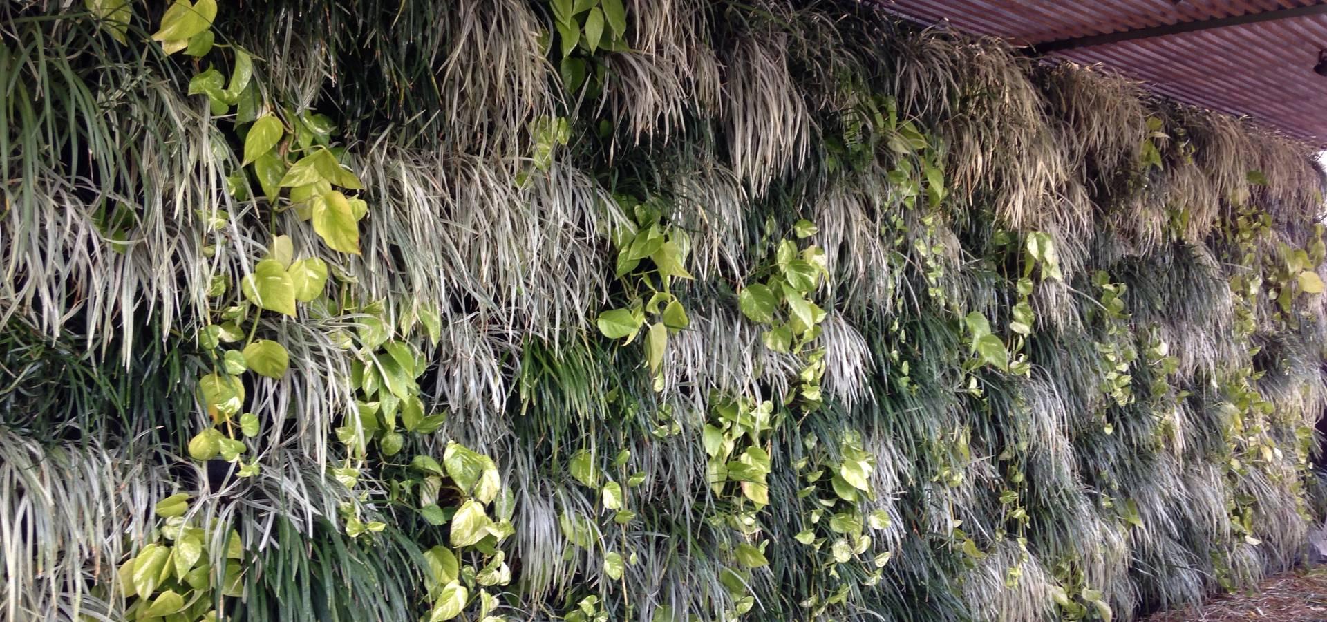 Top Gardens Paisagismo Vertical