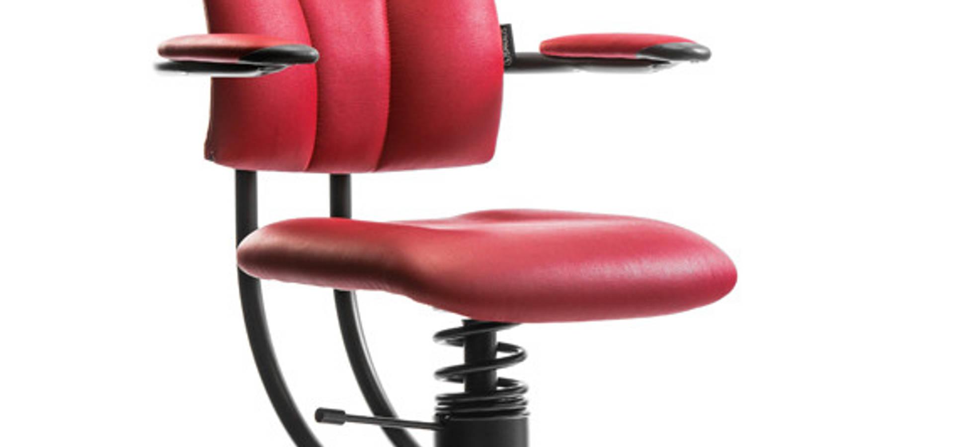 Healthy Sitting Möbel Accessoires In Buchs Sg Homify
