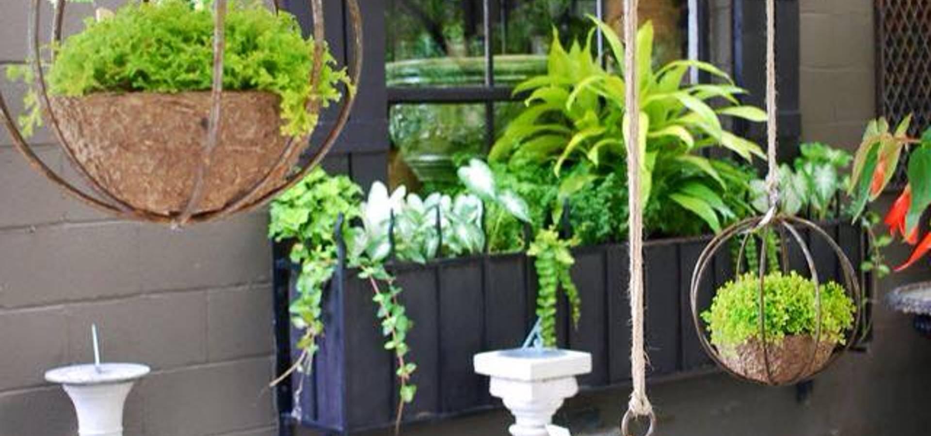 Interior de estudio de jardines verticales homify for Proyecto jardines verticales