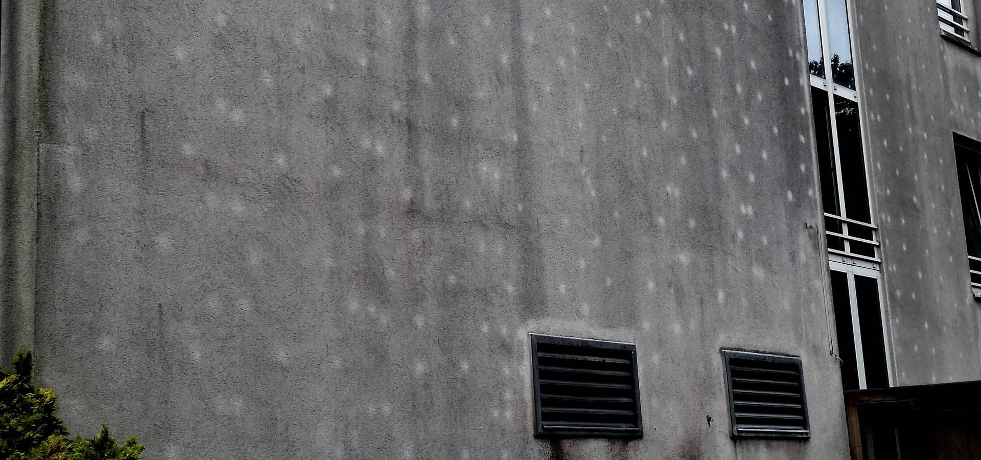 Schneider Fassadenreinigung