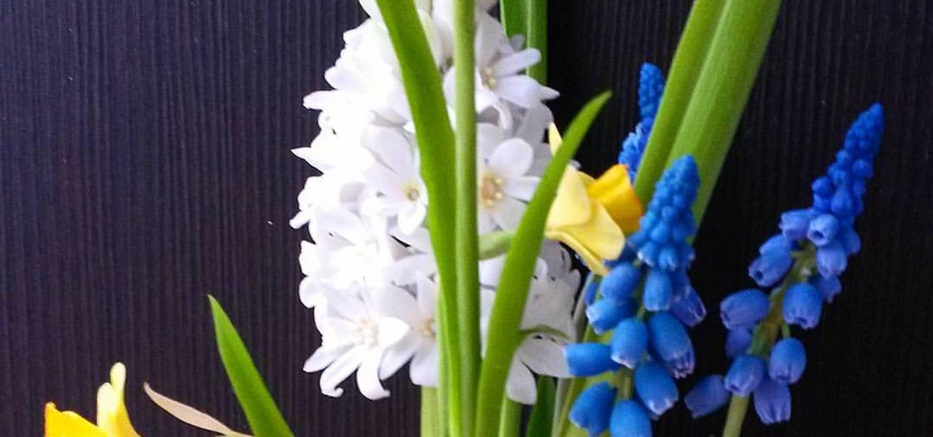 <q class='-first'>Орхидея</q> школа лепки цветов из полимерных глин