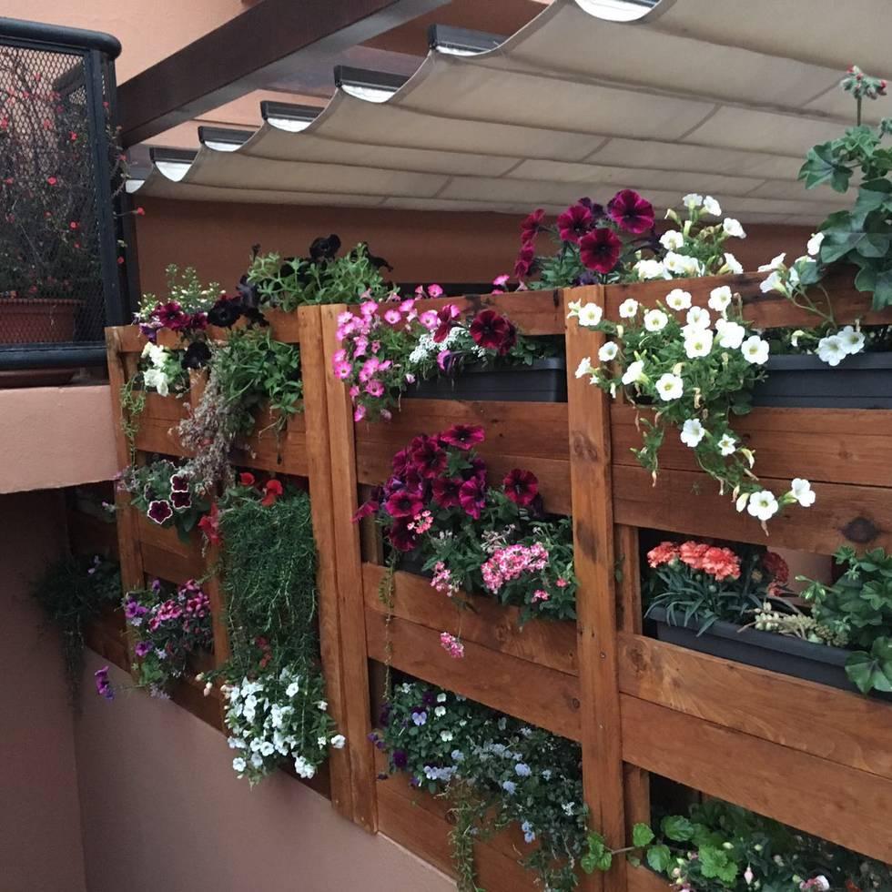 Jardín vertical - vista detallada: Jardín de estilo de Mideco