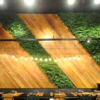 Vertical Garden - Jardim Vertical e Paisagismo Corporativo