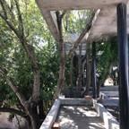 Rr+a  bureau de arquitectos - La Plata