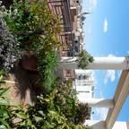 Arcadia Jardines y paisajes