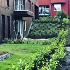 Natura Paisajismo Urbano