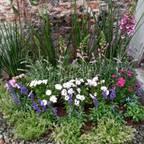 Jardineria bonaterra